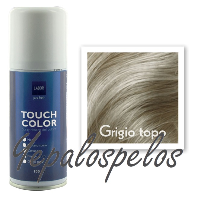 TOUCH COLOR SPRAY 100 ml. - GRIS